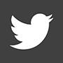 aVA - Que y quienes - redes - twitter